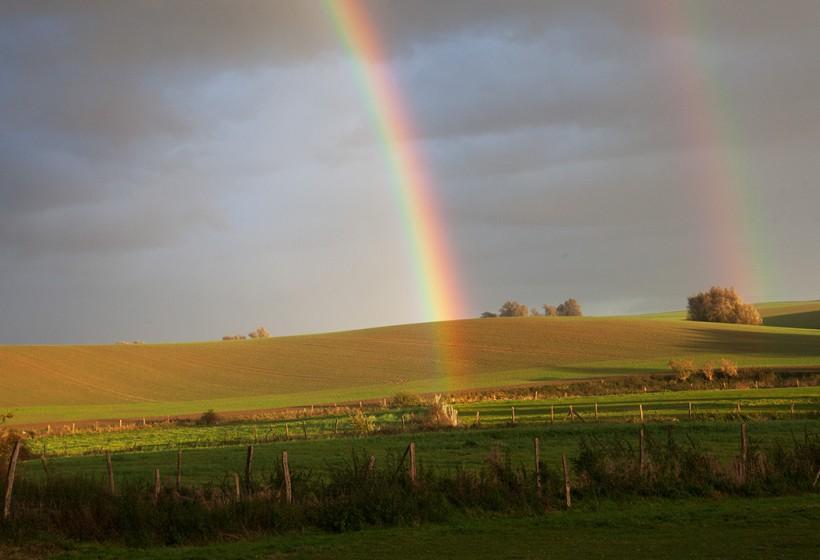 Regenbogen über der Pferdekoppel